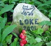 Lille gravsted for det mistede kæledyr