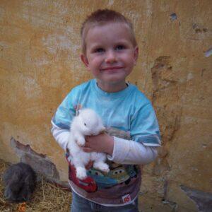 Vaccination af kanin