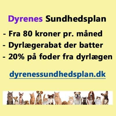 Dyrenes Sundhedsplan