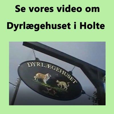 Video fra Dyrlægehuset i Holte